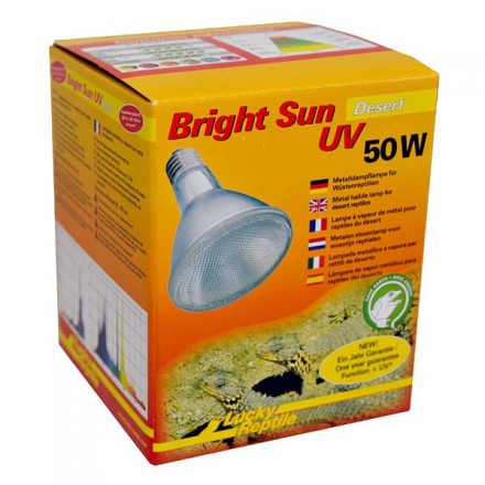 Bright Sun UV désert