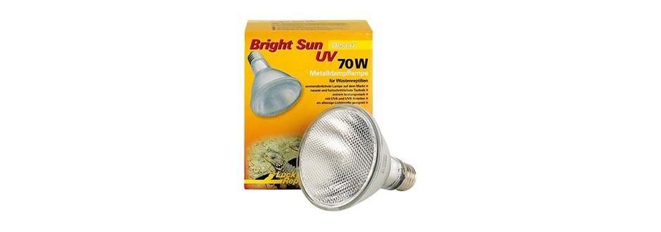 Ampoules à vapeur de metal