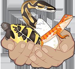 reptiles-farm.ch